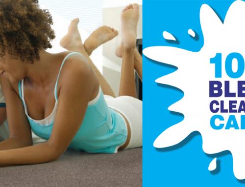 Bleach Cleanable Carpets